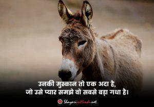 Funny Shayari in English Font
