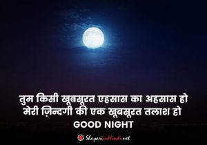 Romantic Good Night Shayari in Hindi