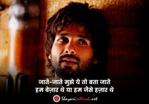 Emotional Status in Hindi on Life